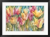 Framed Pastel Tulips