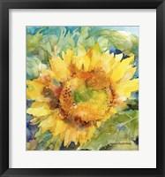 Framed Sunshower