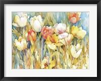 Framed Tulip Team