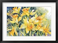 Framed Daffodil Party