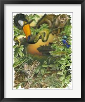 Framed Endangered Rainforest