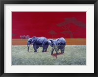 Framed Elephants With Red Sky