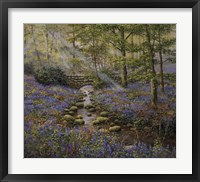 Framed Bluebell Bridge