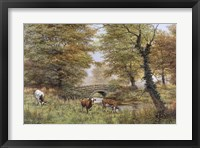 Framed Cows By Bridge