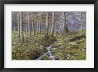 Framed Snowdrop Dell