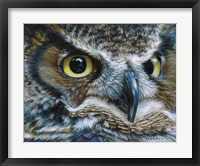 Framed Dark Owl