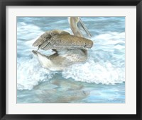 Framed Pelican Surf