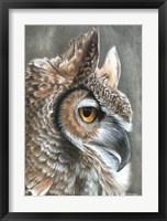 Framed Sepia Owl