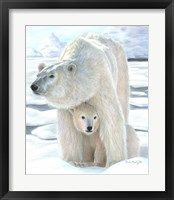 Framed Polar Love