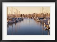 Marina Dusk Framed Print