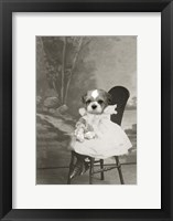 Dog Series #5 Framed Print