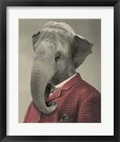 Framed Wild Animals #1