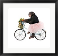Framed Monkeys Riding Bikes #1