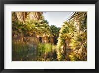 Framed Palms Reflecting