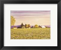 Framed Country Morning