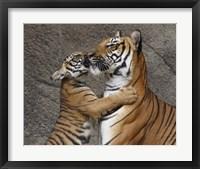 Framed Kiss For Mom