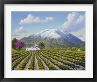 Framed Mount St Helena