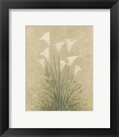Framed Calla Lilly