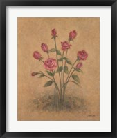 Bunch of Red Roses Framed Print
