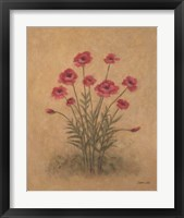 Bunch of Red Poppies Framed Print