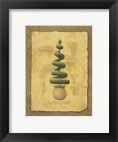 Clipped Yew Framed Print