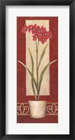 Red Flower In Pot Framed Print