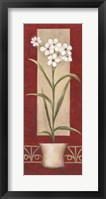 White Flowers In Pot Framed Print