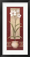 White Flowers In Pot 2 Framed Print