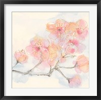 Pink Blossoms III Framed Print