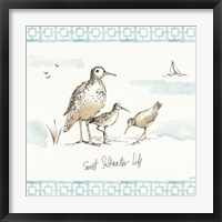 Sandpiper Sea I Framed Print