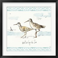 Sandpiper Sea IV Framed Print