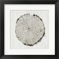 Woodland Years II Framed Print