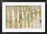 White Forest I Framed Print