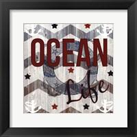 Framed Ocean Life