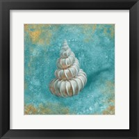 Treasures from the Sea II Aqua Framed Print