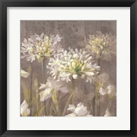 Spring Blossoms Neutral IV Framed Print