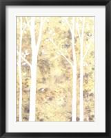 Simple State II Framed Print