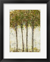 Apple Orchard II Framed Print