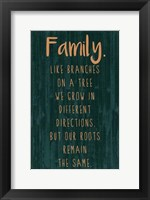 Spice Family Rules III Framed Print