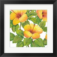 Watercolor Hibiscus III Framed Print