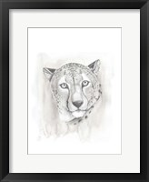 Big Cat Study I Framed Print