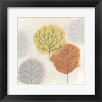 Forest Treasure II Framed Print