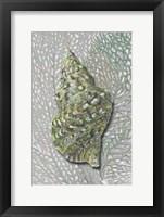 Hifi Triton I Framed Print