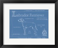 Blueprint Labrador Retriever Framed Print