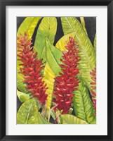 Red Tropical Flowers I Framed Print