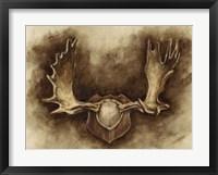 Rustic Antler Mount II Framed Print