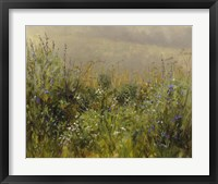 Framed Wildflowers in the Mist