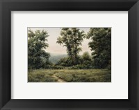Framed Vermont Meadow
