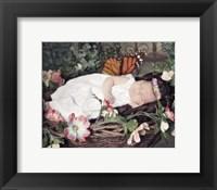 Framed Fairy Dreams