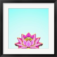 Framed Lotus